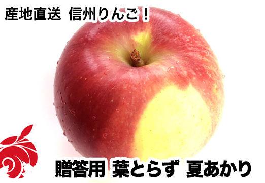 natsu-a
