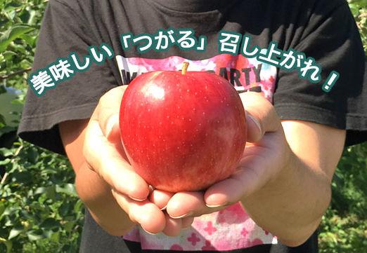 tsugaru-b-02