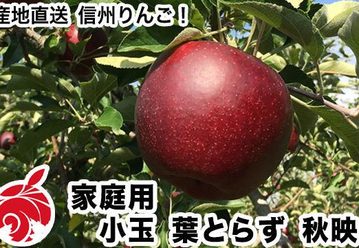 akibae-d