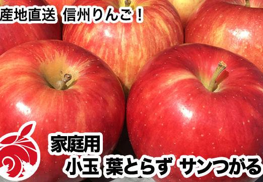 tsugaru-d