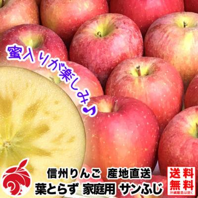 fuji-b-01