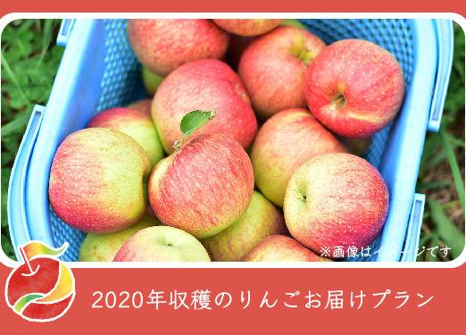 appleline_信州フルーツのおすそわけ_アイキャッチ_アートボード 1
