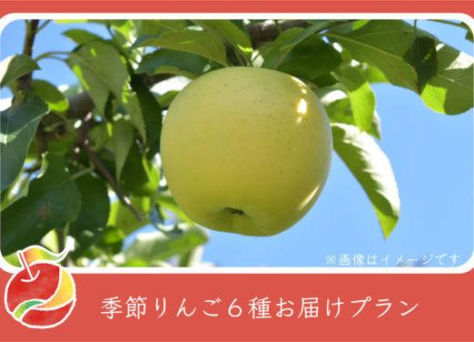 appleline_CF_return-12