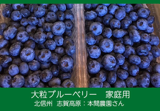 blueberry-hn