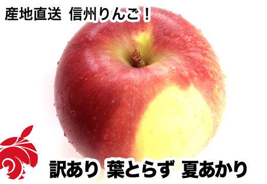natsu-c