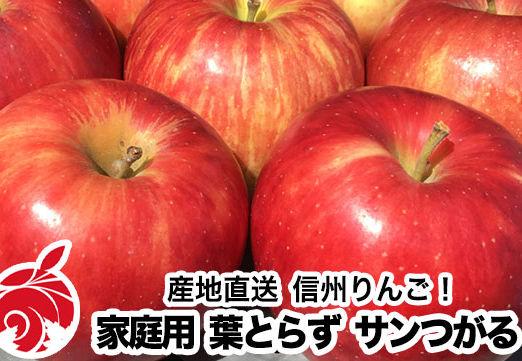 tsugaru-b