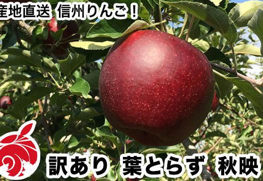 akibae-c