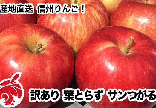 tsugaru-c